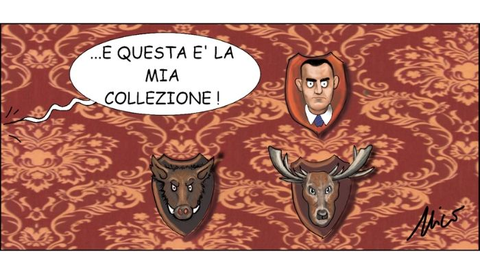 Collezione Salvini