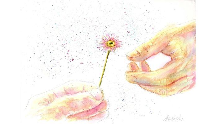 fiori . neppure i fiori ai funerali perché con il coronavirus i fioristi sono chiusi. Nicocomix