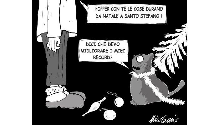 Da Natale a Santo Stefano . Quanto dura l'albero di Natale se in casa c'è un gatto? Nicocomix